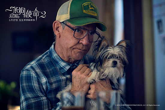 《一条狗的使命2》今日上映 四大看点揭秘