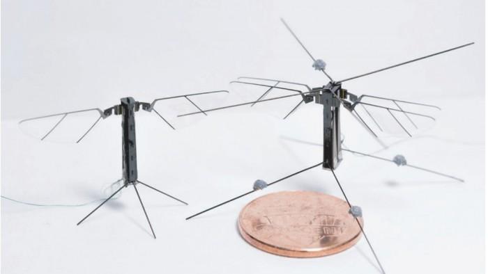 研究人员开发全新微型蜜蜂机器人 配备四个翅膀