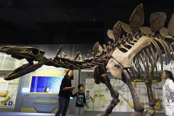 """恐龙实验室登陆南京 游客""""秒回""""侏罗纪"""