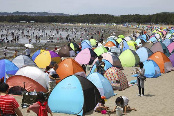日本横滨海滩旅游旺季开始 游客支帐篷挖蛤蜊
