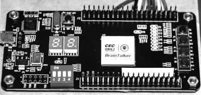 全球首款脑机接口专用芯片在天津发布