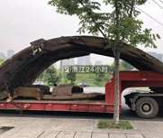 撞塌天桥的货车就是它!