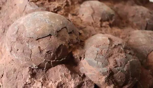 """郊游发现一块""""怪""""石头,专家鉴定:不得了!"""