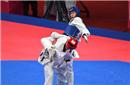 奥运冠军赵帅卫冕世锦赛金牌 中国跆拳道队创佳绩