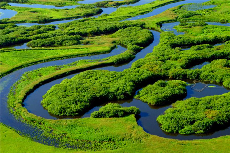 """览湿地风光,游壮美龙江——""""湿地游""""成生态风景线"""