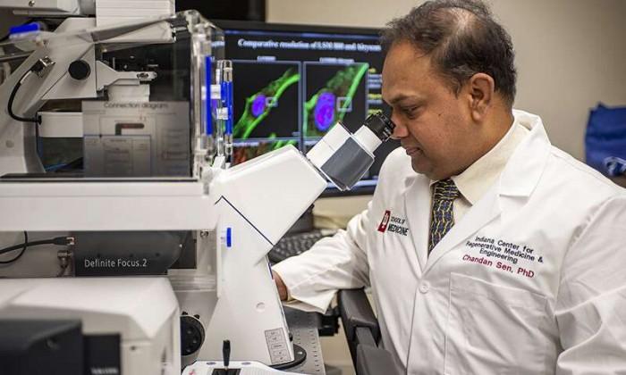 新伤口敷料用弱电场来对抗抗生素耐药性细菌感染