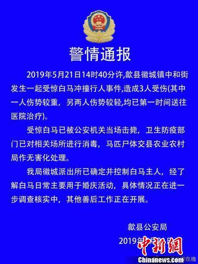 安徽歙县:一受惊白马闹市撞伤3人 被当场击毙
