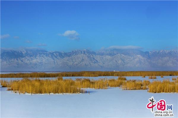 宁夏沙湖 遇见不一样的西北风光