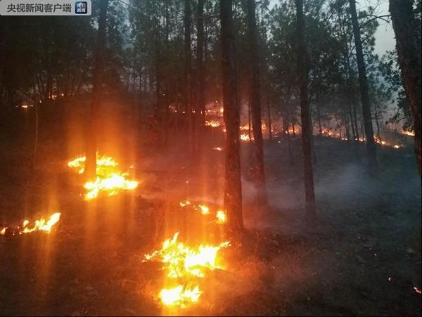云南丽江森林火灾出现新火场,正在扑救