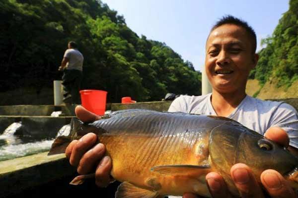 贵州榕江生态冷水养殖助农增收