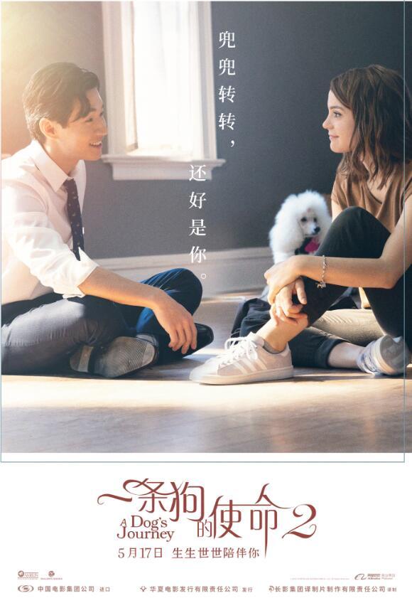 《一条狗的使命2》票房破亿 刘宪华首战告捷