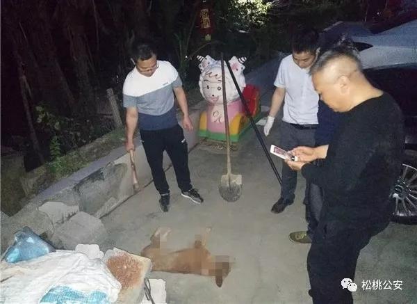 """贵州一家养狗突然""""发疯""""咬伤7人被特警击毙"""