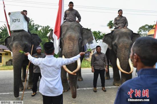 印尼警方:效忠IS人士参与雅加达骚乱 欲发起恐袭