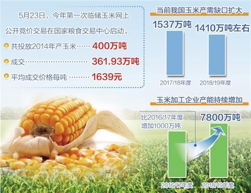 """合理运用调控手段 临储玉米拍卖成粮市""""稳定器"""""""