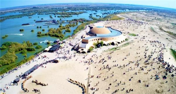 宁夏沙湖:芦头鸟的歌 苇尾鱼的诗