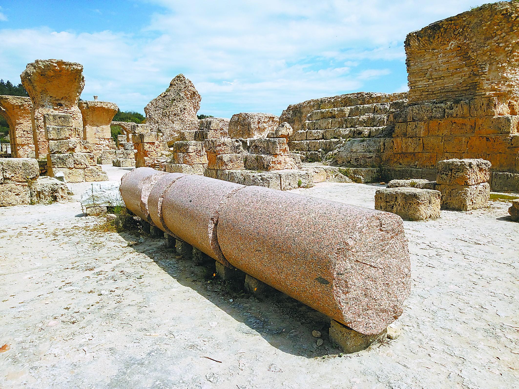 迦太基,突尼斯的文化密码