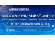 """2019中国国际经济合作""""走出去""""高峰论坛"""