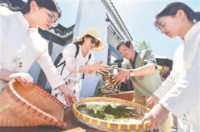 苏茶飘香北京世园会