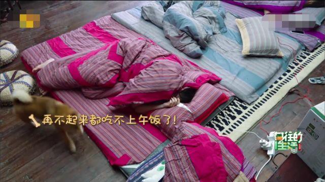 《向往的生活3》新人嘉宾睡懒觉不起床,黄磊的叫醒方式有点刚