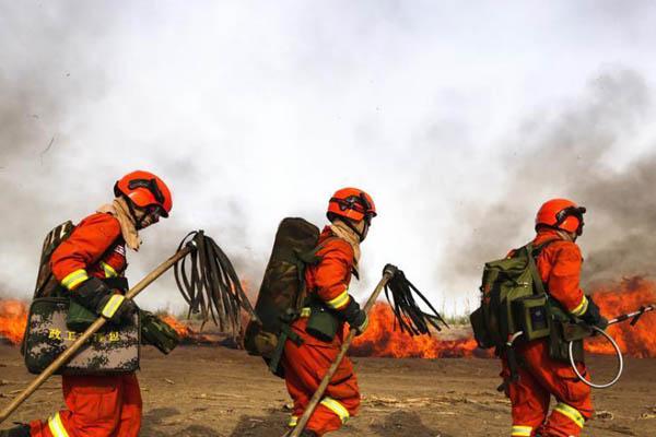 甘肃森林消防员开展实地灭火演练