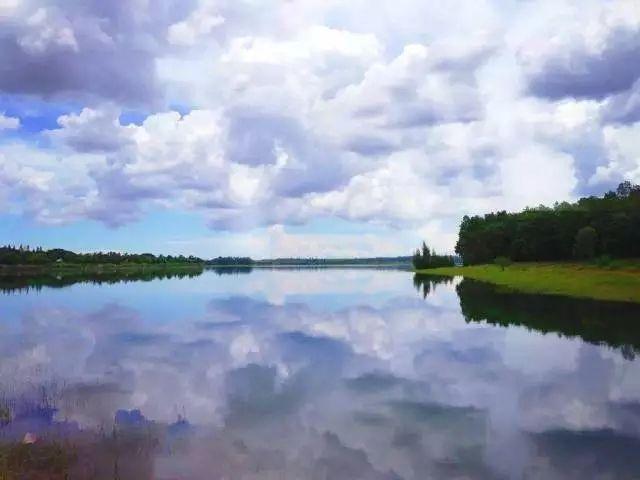 湖南设立东洞庭湖生物多样性司法保护基地