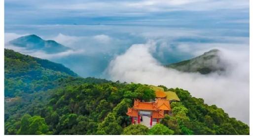 依托森林资源 观音山景区走生态旅游绿色发展之路