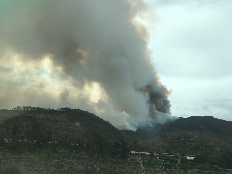 云南大理弥渡县发生森林火灾, 550人赶赴现场扑救