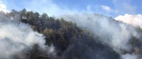 大理弥渡森林火场南、西线明火已扑灭
