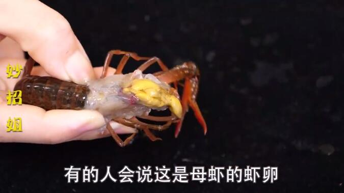 虾黄or虾屎,小龙虾虾头里究竟是啥?很多人一直都错了