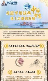 中国智慧谈上合组织发展