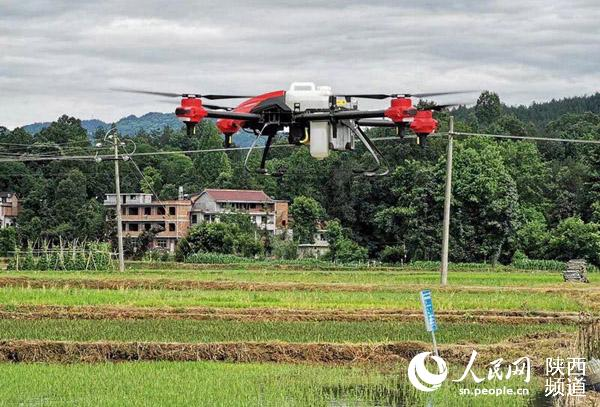 """无人机技术让农业""""智慧""""起来"""