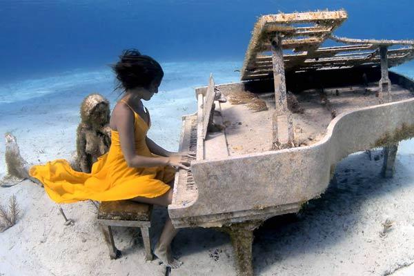 """巴哈马小哥拍水下钢琴师 """"美人鱼""""侧耳倾听画面好唯美!"""