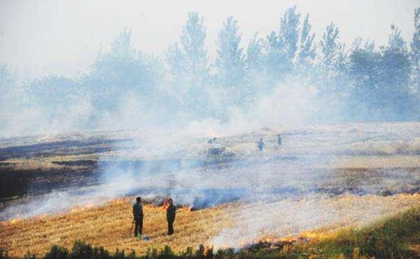 江苏今夏秸秆焚烧第一把火被通报 2处火点均在镇江