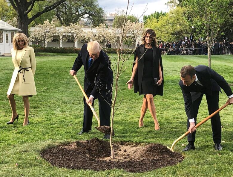 """送给特朗普的""""友谊之树""""死了,马克龙:再送"""