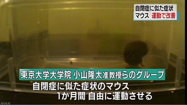 日本东京大学研究:运动或有助于改善自闭症