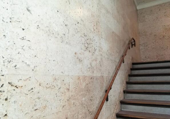 """海螺、鱼尾鳍、海百合……日本国会大楼成一座""""化石宝库"""""""