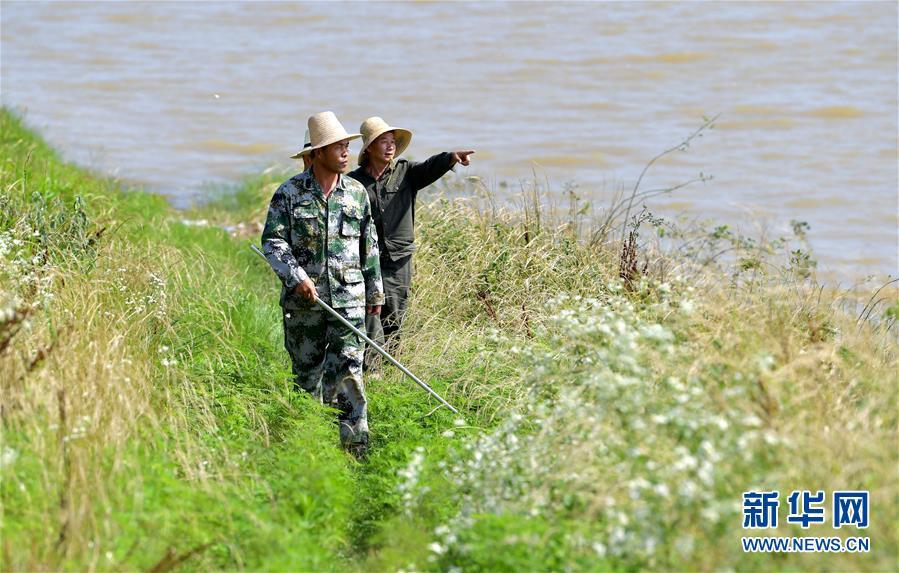 江西南昌:巡堤排险 力保汛期安全