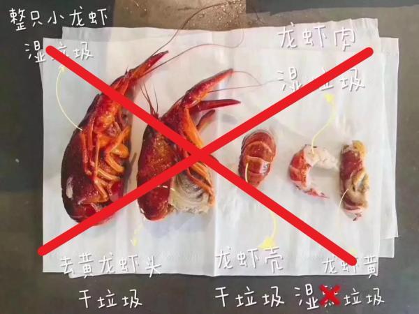 """被""""小龙虾身后事分类图""""搞晕了?正解:小龙虾全身是湿垃圾"""