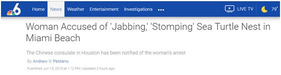 """被指涉嫌非法""""骚扰""""濒危海龟窝,一41岁中国女性在迈阿密被拘"""