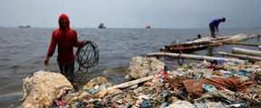 """印尼将夹带尿布的""""洋垃圾""""退回美国"""