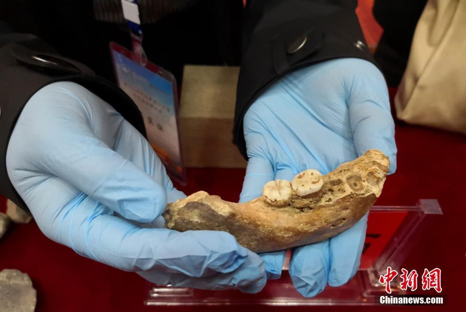 夏河丹尼索瓦人化石发现地:为青藏高原最早考古遗址