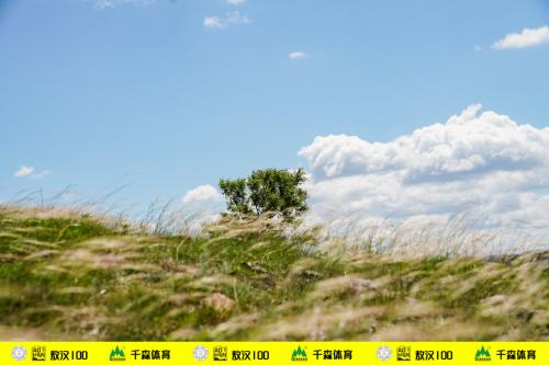 """2019""""蒙古馬杯""""千森敖漢100國際超級越野跑精彩落幕"""