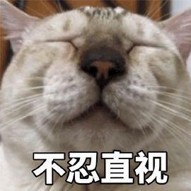 """暴雨""""转战""""长江中下游!北方""""烧烤""""天气又双叒上线!"""