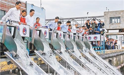 放流中华鲟 2019年长江口珍稀水生生物增殖放流活动日前在长江口水域举行