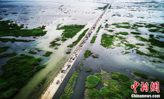 """鄱阳湖水位上涨 江西""""水上公路""""引游客排长队赏景"""