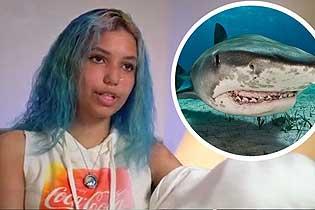 美国少女遭鲨鱼袭击 英雄老爸捶打鲨鱼救女儿