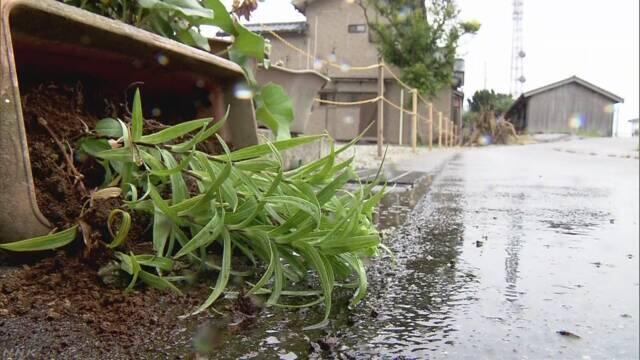 日本新潟县发生里氏6.7级地震致多人受伤,核电站无异常