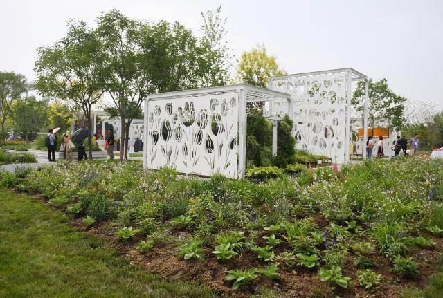 """北京世园会荷兰园:""""街心花园""""展现绿色城市理念"""
