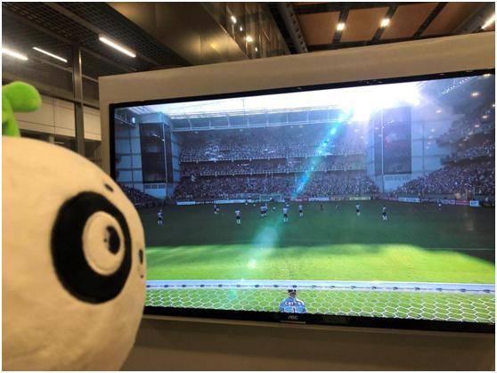环环巴西历险记之十二——足球粉丝