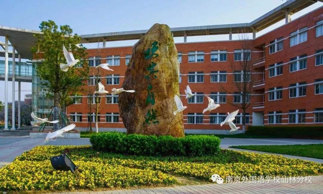 6月22日南京热门校摇号 南外命中率约96.5%